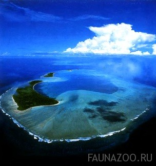 Остров Палау