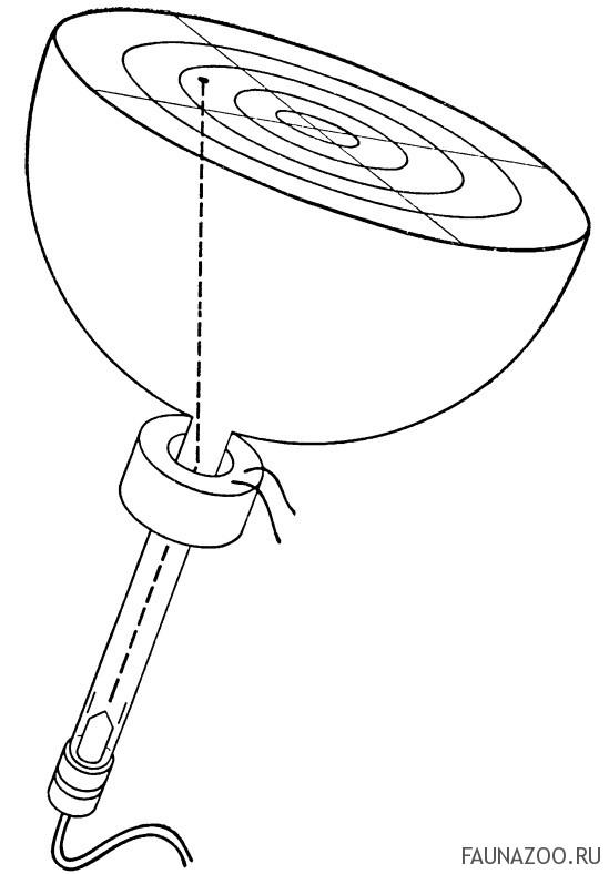 Радиолокатор