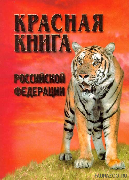 Животные, занесенные в Красную книгу