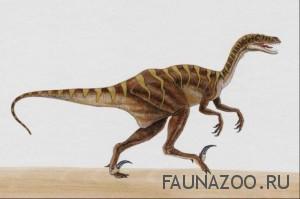 Мелкие хищные динозавры