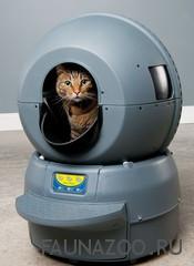 Автоматический кошачий туалет – биотуалет нового поколения