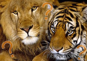 Кто сильнее тигр или лев