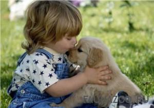 Зачем животные дома детям