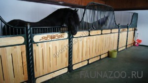 Специальные покрытия для содержания лошадей