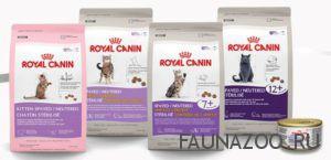 Обзор корма для котов от торговой марки Royal Canin